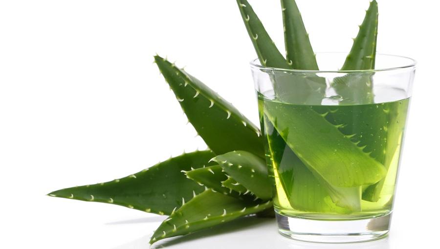 Aloe vera e succo di aloe ed il loro impiego nella cosmetica